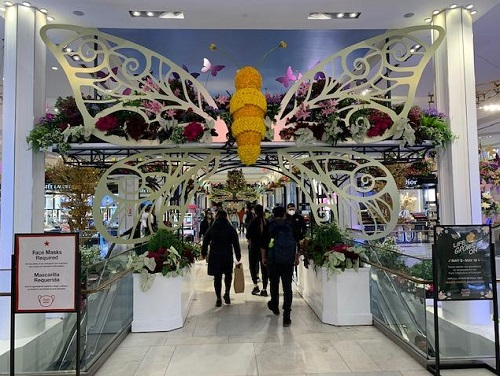 The Macy's Flower Show, NYC, 2021, Butterfly