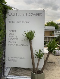Coffee + Flowers